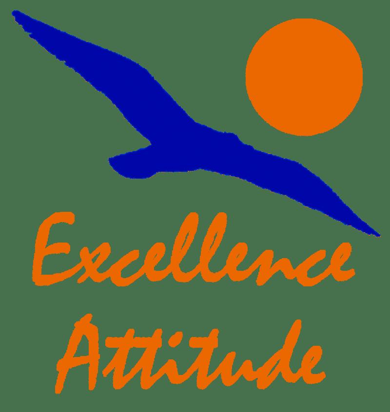 Excellence Attitude
