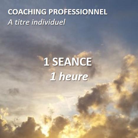 Séance de coaching professionnel à titre individuel d'une heure