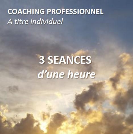 Coaching professionnel à titre individuel, pack de 3 séances d'une heure